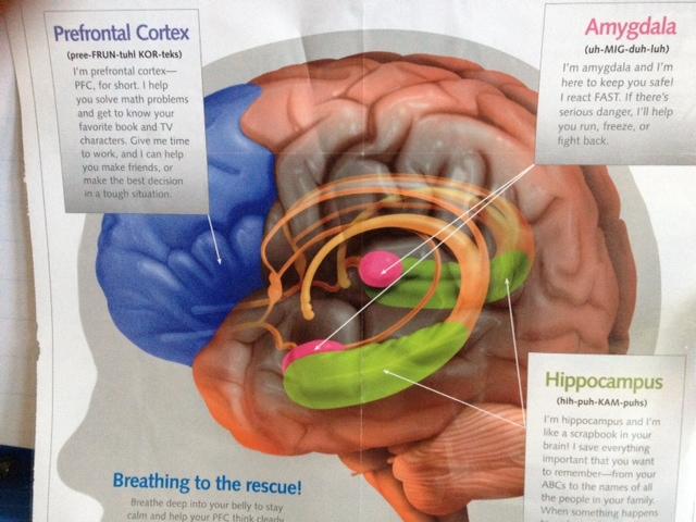 Lehrplan für Geistestraining: MindUp Curriculum