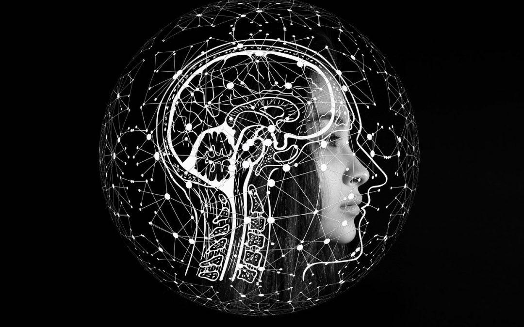 Buddhismus und moderne Wissenschaft, Oberstufe